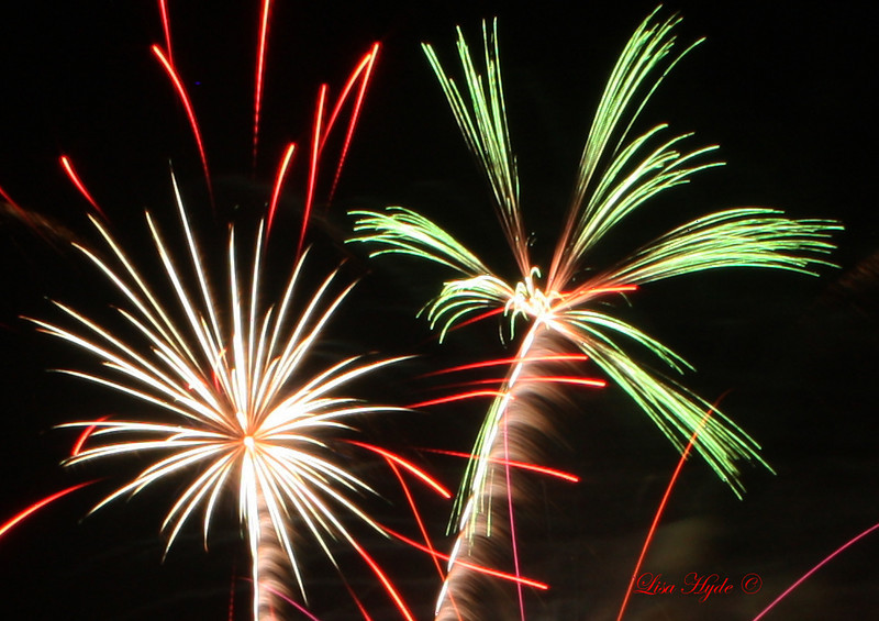 IMG_3064 PS FIREWORKS signed.jpg