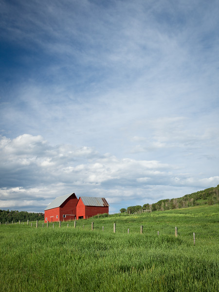 'Red Barns' - Steamboat Springs, Colorado