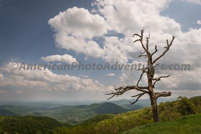 Shenandoah National Park