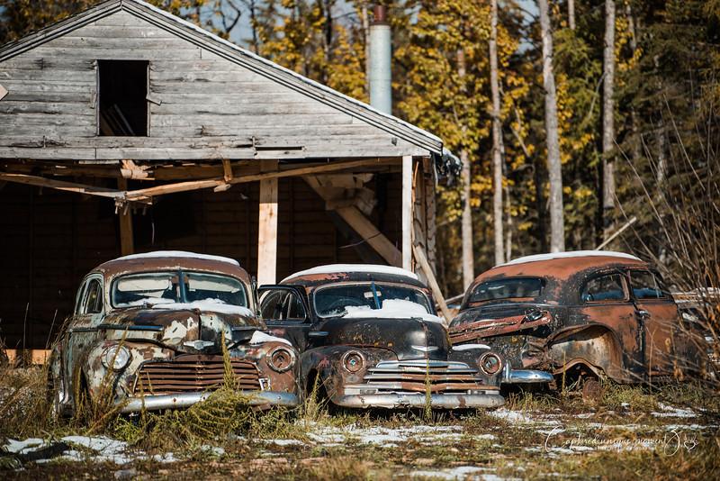 181006 Vintage Truck 0001.jpg