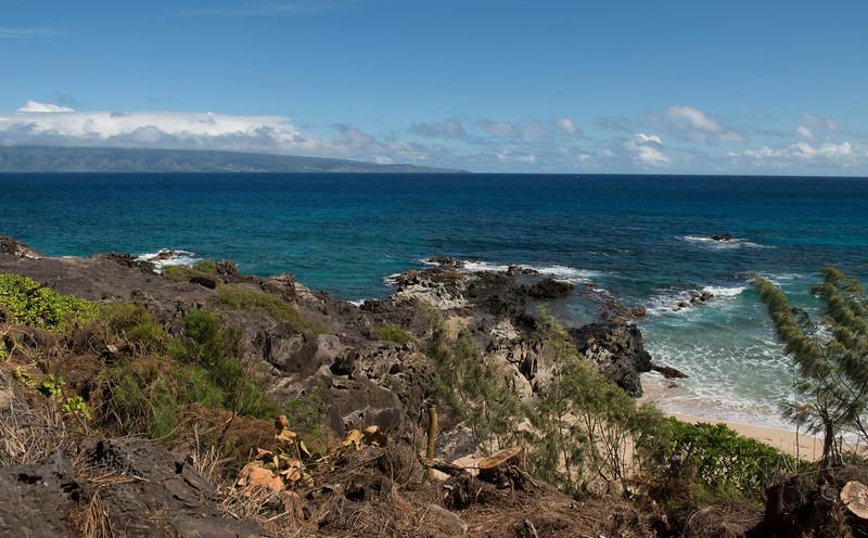 hawaii_0315.jpg