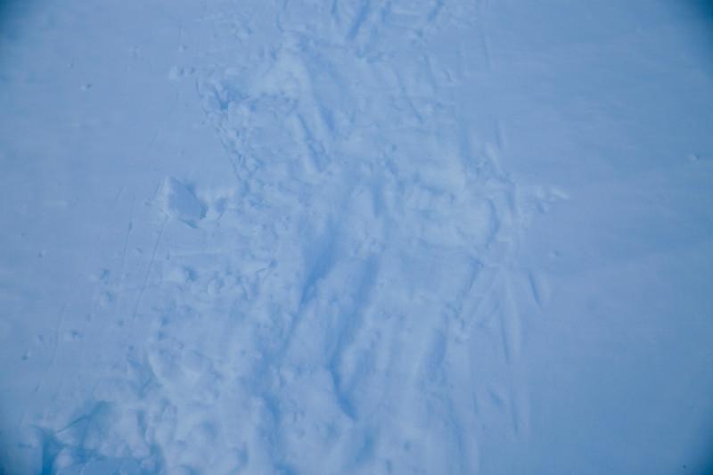 200124_Schneeschuhtour Engstligenalp_web-173.jpg
