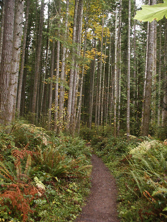 Hiking-North America