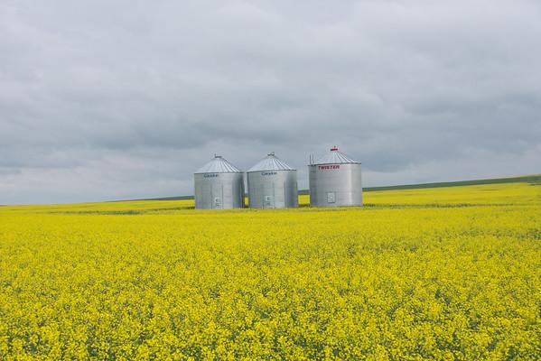 2015 Alberta Saskatchewan