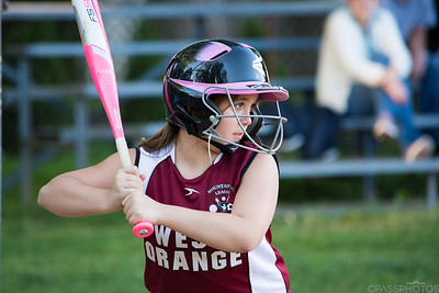 Breeze Softball Gallery