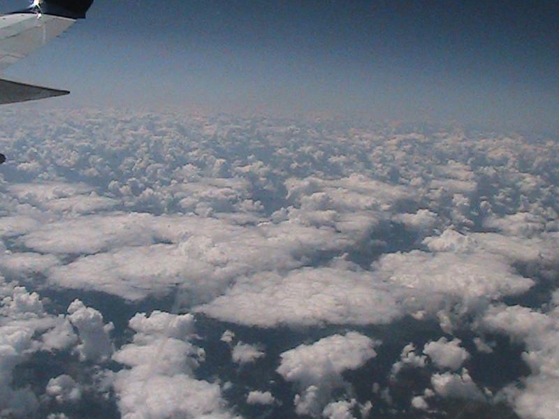 2011-08-10 63.jpg