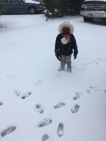Snow January 2017