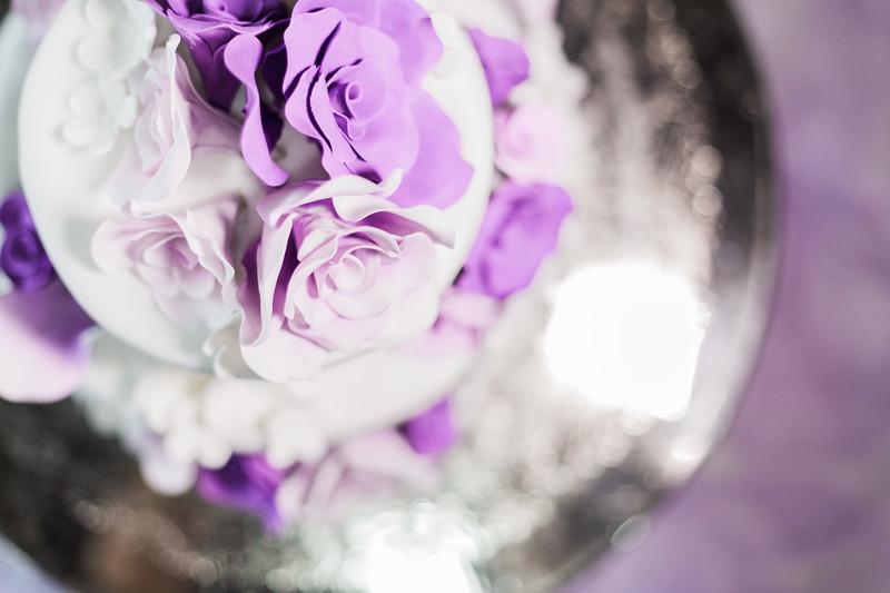 ELP1104 Amber & Jay Orlando wedding 2369.jpg
