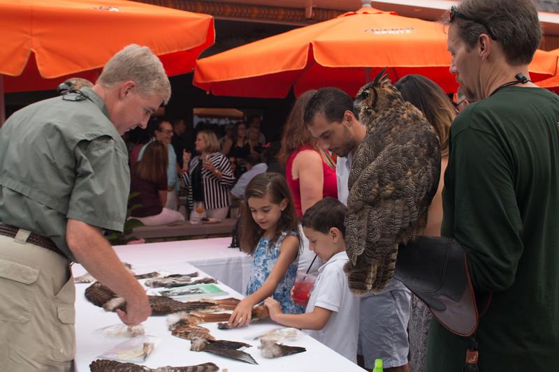 EA Wildlife Centro 072017-97.jpg