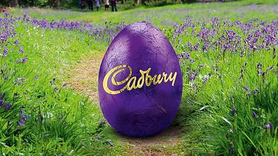 31.03 Foodstuffs North Island Easter
