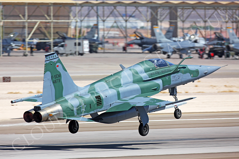 F-5FORG 00022 Northrop F-5E Freedom Fighter Brazilian Air Force 4873 Nellis AFB by Peter J Mancus.JPG