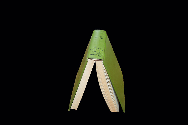 Green Book A frame.jpg