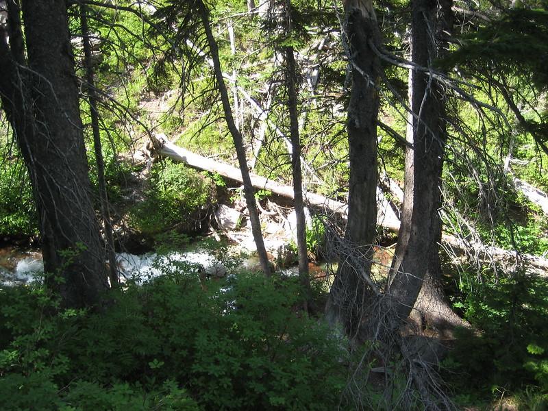 2008-07-24-YOCAMA-Montana_1644.jpg