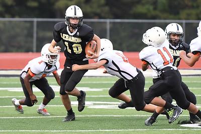 Football - LMS 8th 2017 - Waynesville