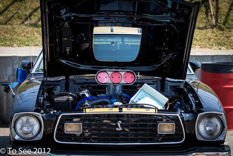 Mustang Show 2012