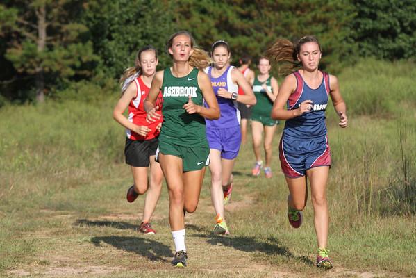 2013 Gaston County Championship - Girls