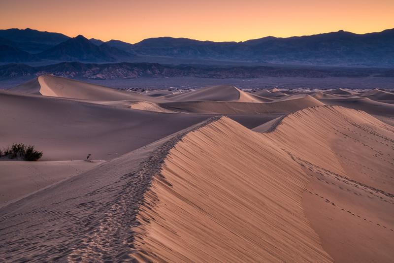Death Valley Spring 2019-6.jpg