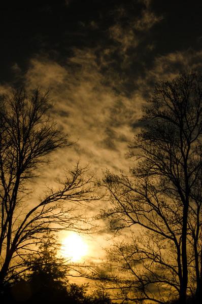 North Carolina - January 2012