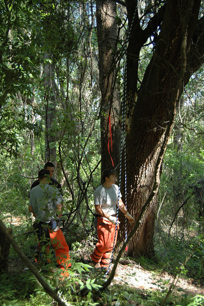 6 April, 11:21am Jason, James, and Lisa. They've thrown a beanbag weighted rope over the snag. The heavy chain follows. It's then connected to a winch down on the multiuse trail. The whole she-bang gets dragged clear.
