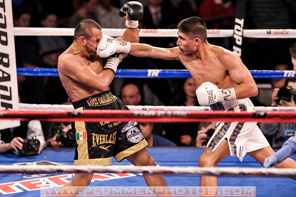 Boxing Tear Sheet