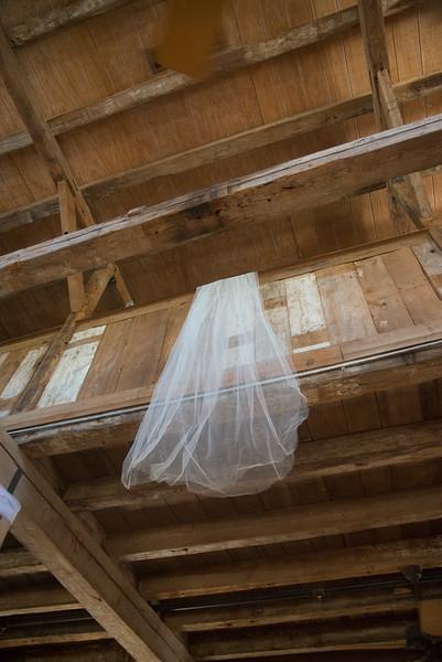 Donoho/Craney Wedding