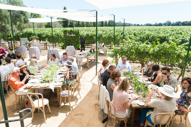 Vintner's Luncheon at Luna Vineyards