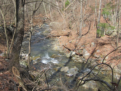 Naked Creek 2011-03-07