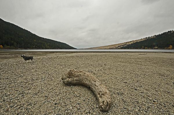 Wallowa Lake (low water) and Deer, 10-24-15