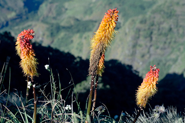 Simien Mountains 2 (Ethiopia)