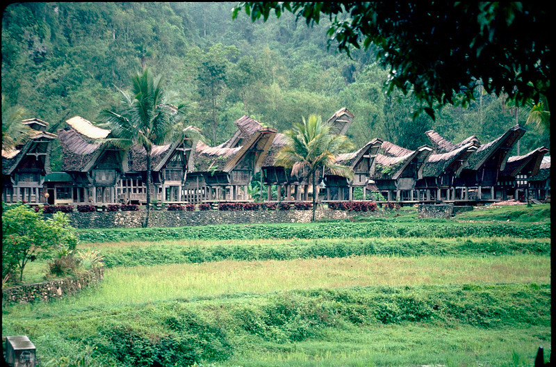 Indonesia1_114.jpg