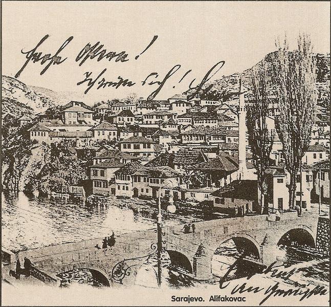 2-Alifakovac-L.jpg