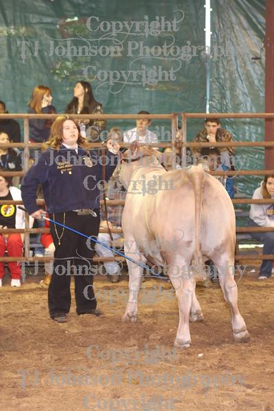 2010 KISD Steer Show