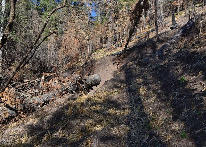 NEA_0607-7x5-Bluefront trail washout.jpg