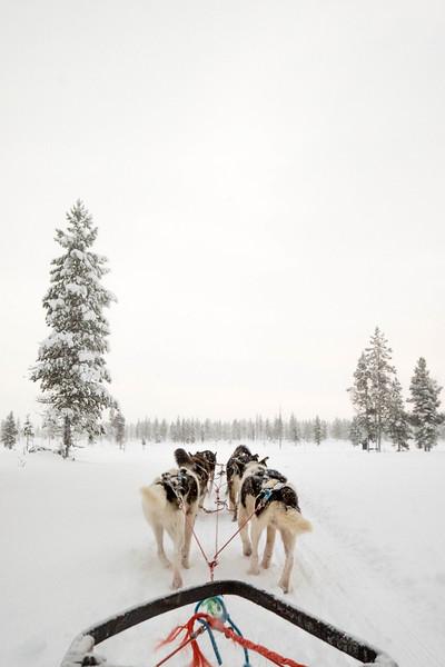 Finland_160116_43.jpg