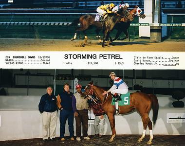 STORMING PETREL - 11/19/1996