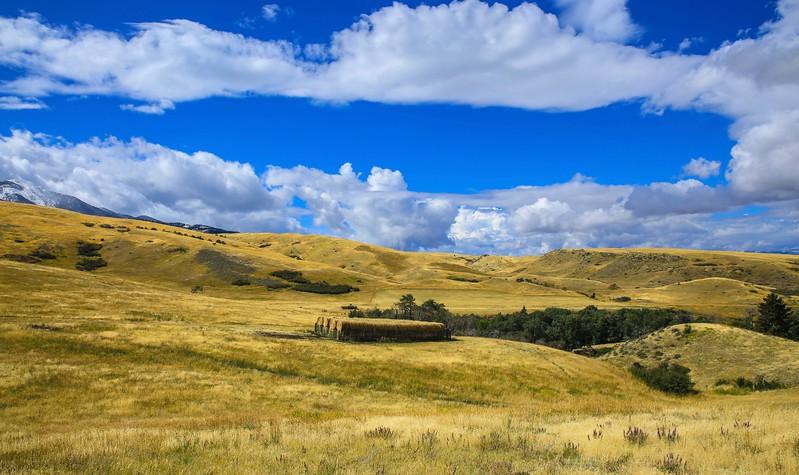 Livingston landscape 19.jpg