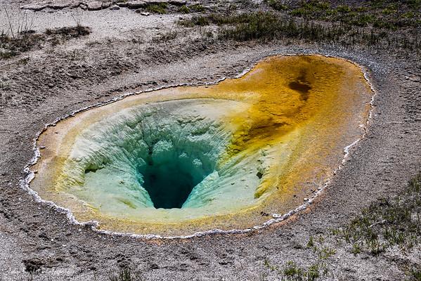 Yellowstone 2021