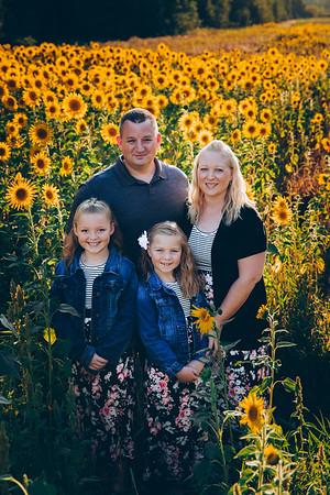Sunflowers Greniger