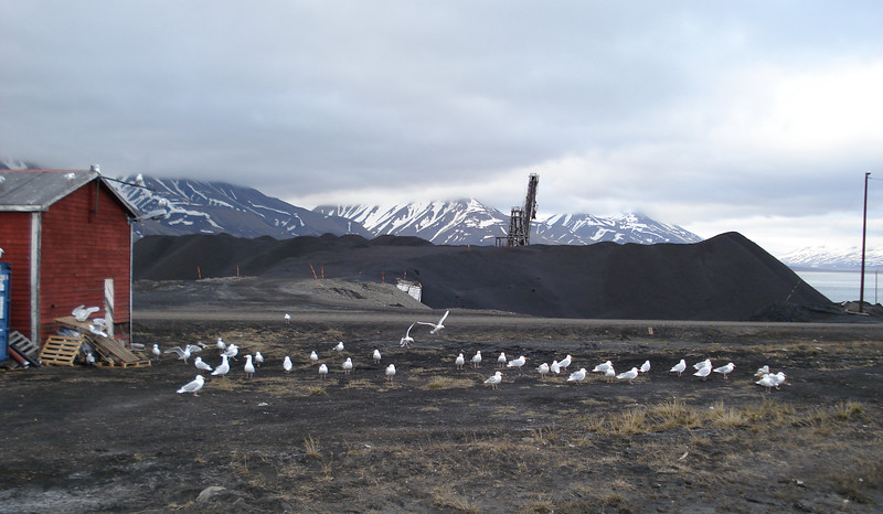 Svalbard_0015.jpg