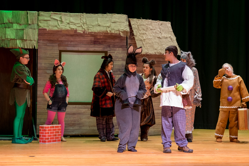 2015-03 Shrek Rehearsal 0946.jpg