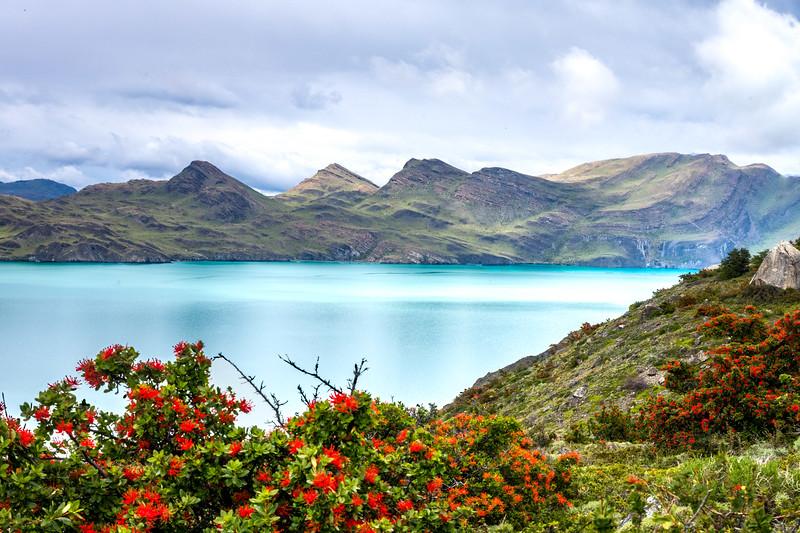 Patagonia-31.jpg