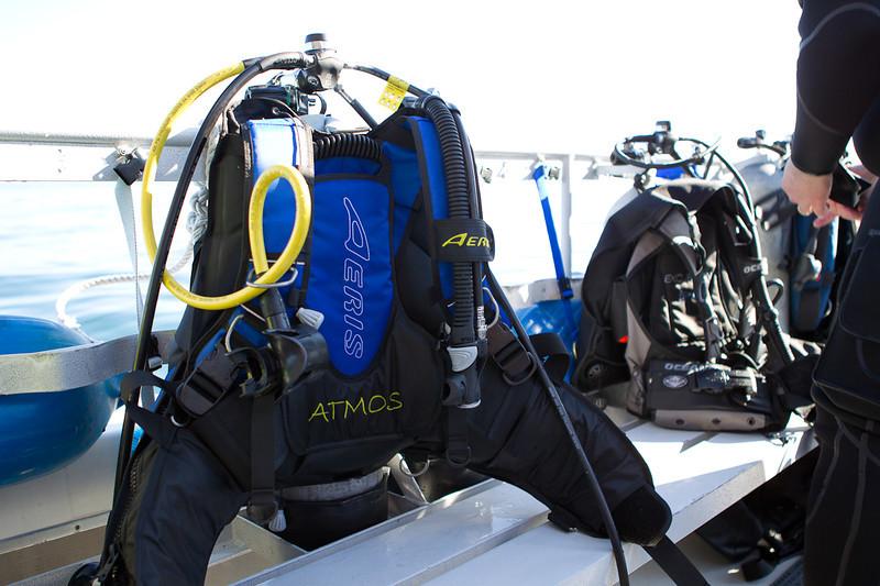 01-05-12_Monterey_Boat_Dive_Roeder_45.jpg