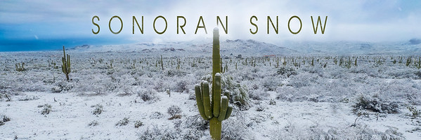 Sonoran Snow Short Film in 4K