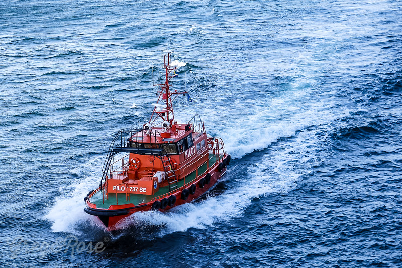 Here comes the Pilot boat
