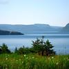 Gros Morne National Park, Newfoundland - 7