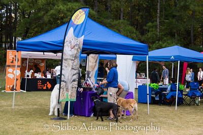 Fetch A Cure Mutt Strutt 2015