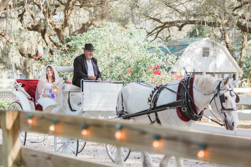 ELP0312 DeRoxtro Oak-K Farm Lakeland wedding-997.jpg
