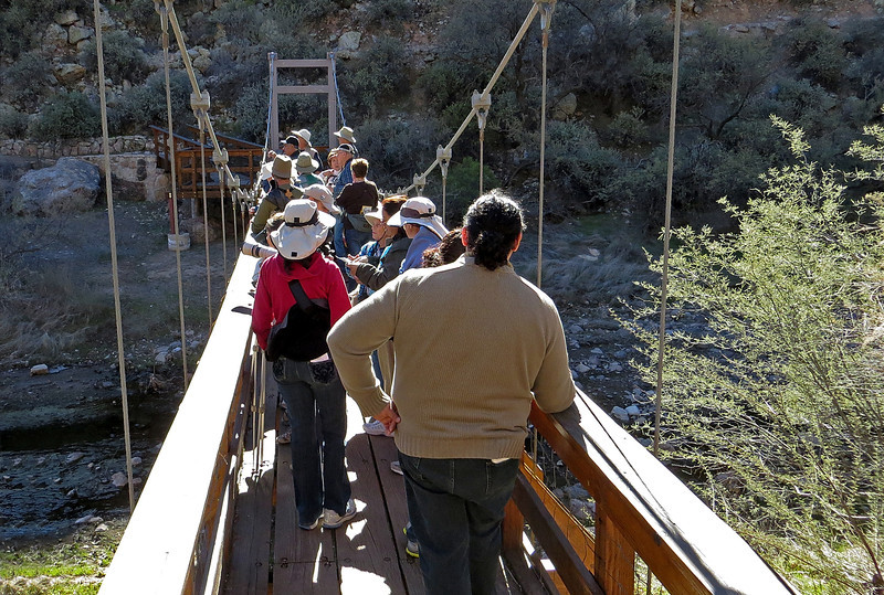 El Paso Audubon group on Boyce Thompson suspension bridge.