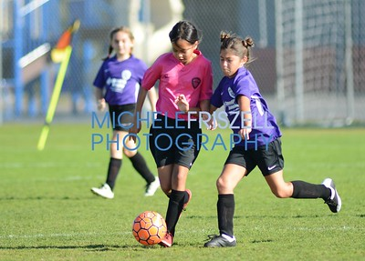 L.J. GU12 Purple vs Pink team 11-3-18