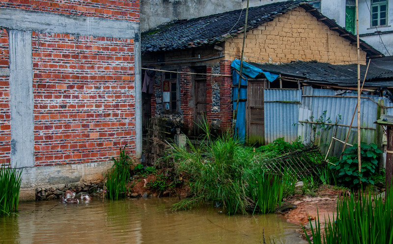 2012 china fisherman & old man w- cow-32.jpg